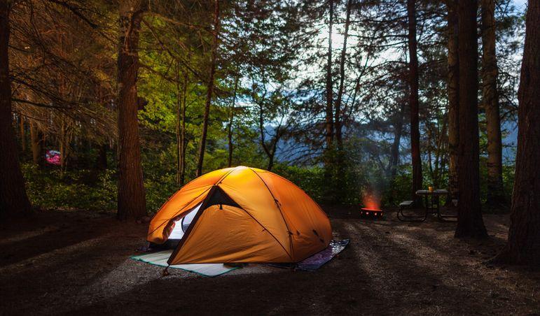 luxury camping in shivpuri