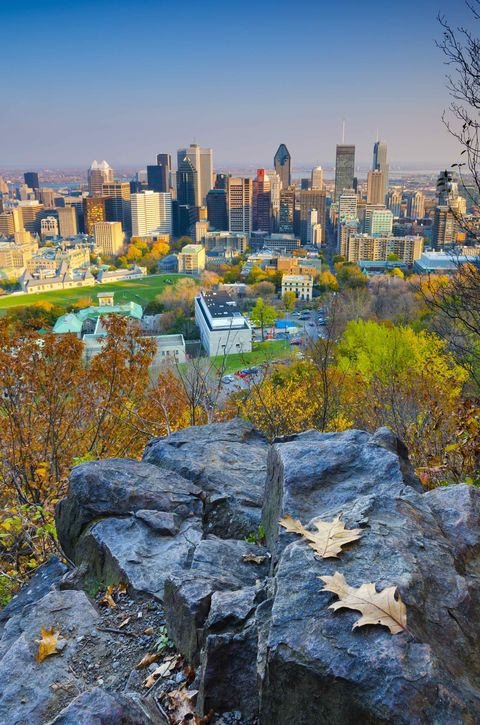 Montreal. Downtown from Mount Royal Park
