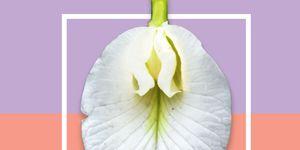 women's health and canesten