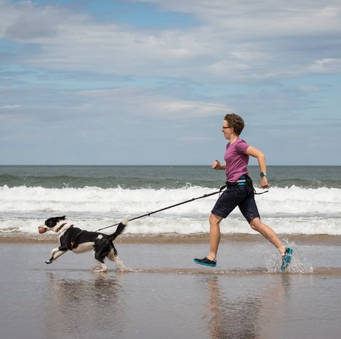 CaniCross: Everything you need to know for both dog and owner