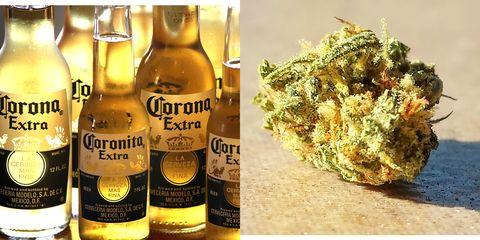 Drink, Alcoholic beverage, Alcohol, Bottle, Distilled beverage, Liqueur, Scotch whisky, Glass bottle, Beer, Whisky,