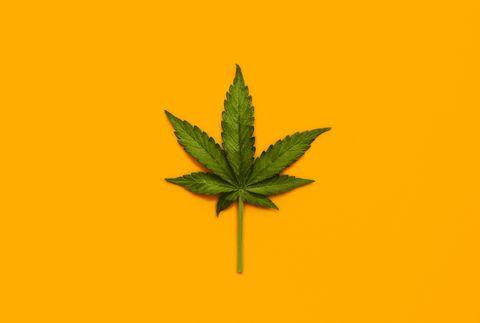 medical cannabis uk home secretary sajid javid announces medicinal