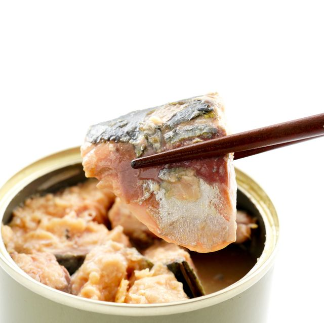 canned mackerel canned food