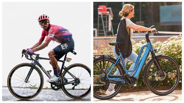 ponbike cannondale bike and gazelle bike
