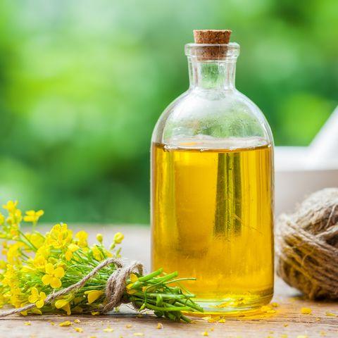 canola oil healthiest oils