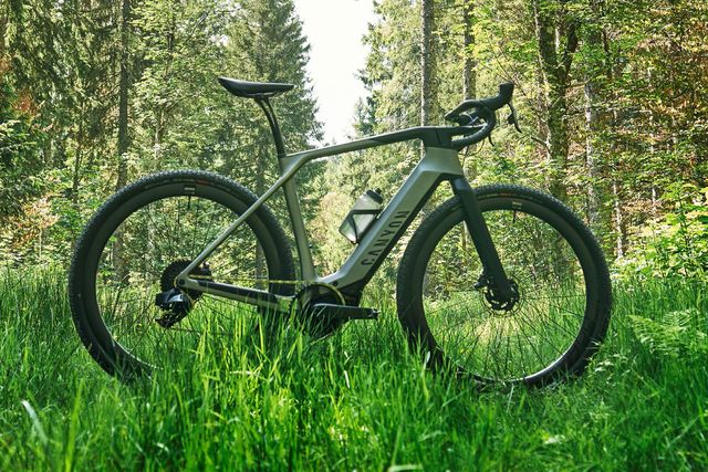 a green bike in a forest
