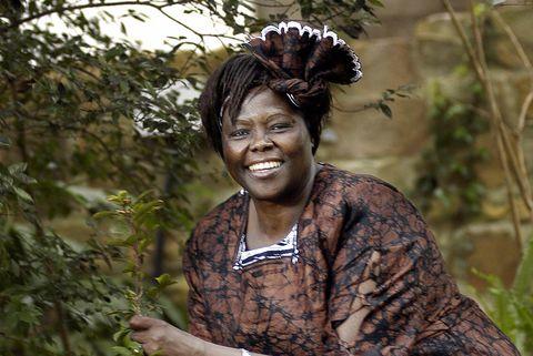 kenyan nobel peace prize winner professo