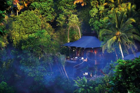 Nature, Vegetation, Green, Natural landscape, Jungle, Natural environment, Majorelle blue, Blue, Water, Biome,