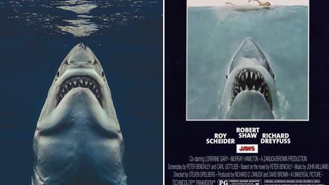 Tiburón Un Fotógrafo Recrea El Cartel De La Icónica Película De Steven Spielberg