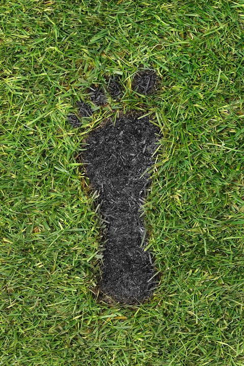 Calculate Your Carbon Footprint - How to Celebrate Earth Day