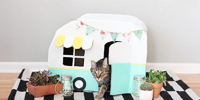 diy cardboard cat house kitty camper