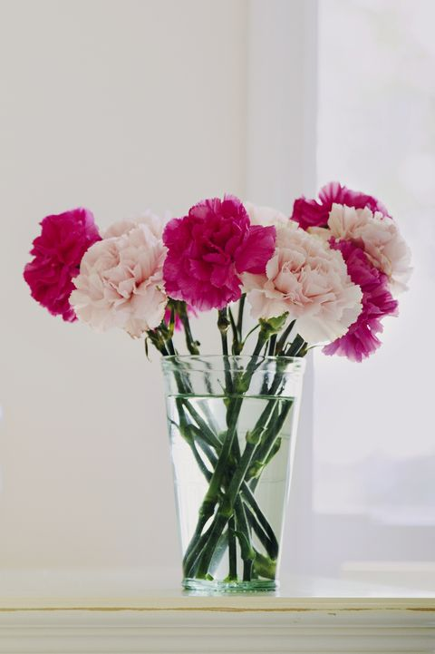 cfd8997b 13 Best Flowers for Valentine's Day - Popular Roses & Arrangements ...