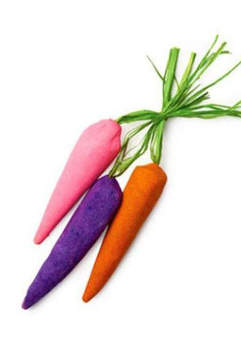 carrot bubble bars