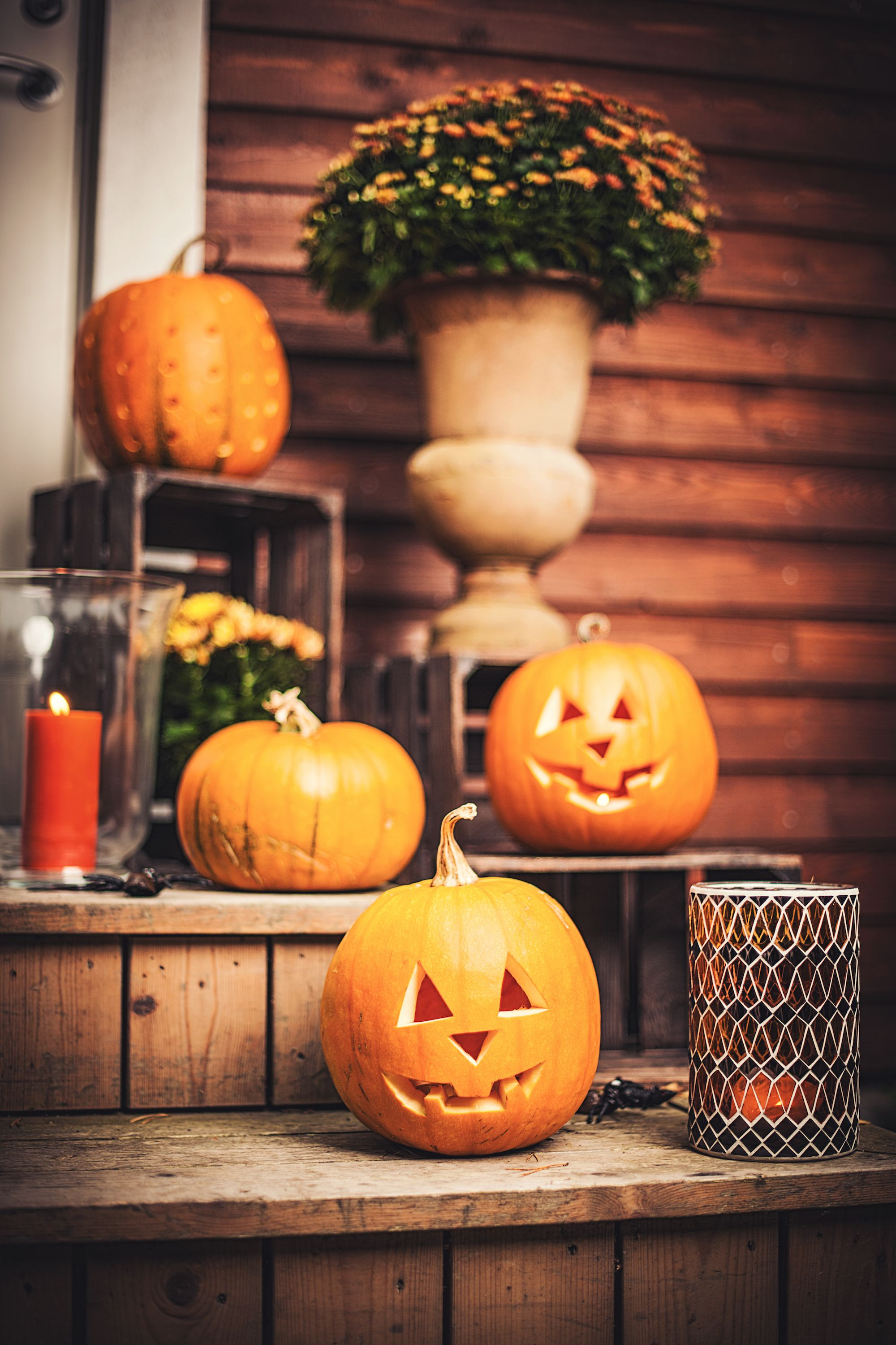 20+ Easy Pumpkin Carving Ideas For Halloween 2018  Cool