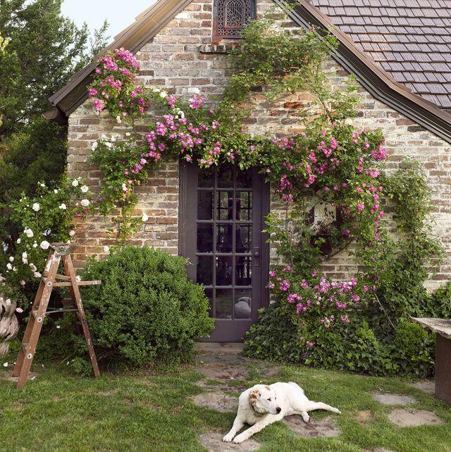 casa de campo cottage