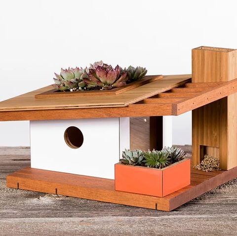 casa de pájaro de madera decorada con mini suculentas
