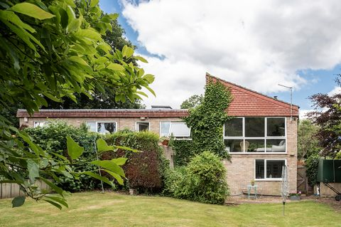 Casa de campo familiar decorada con plantas oversize