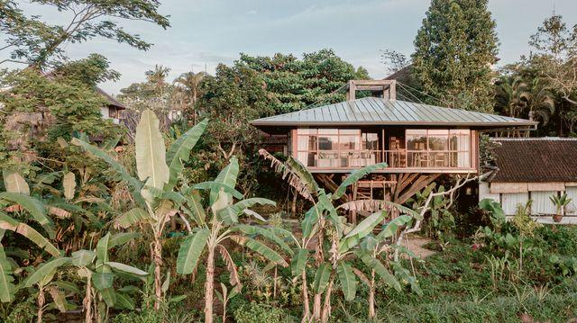 casa del árbol de stilt studio en ubud, bali