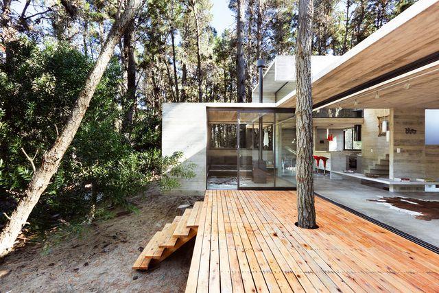 una casa de hormigón en un bosque de argentina