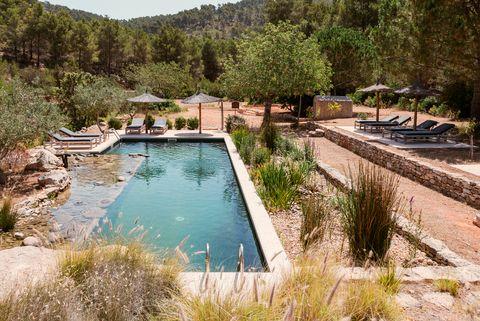 piscina con jardín ibicenco