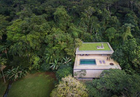 Vegetation, House, Roof, Real estate, Home, Villa, Garden, Jungle, Cottage, Estate,