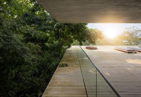 Wood, Leaf, Walkway, Hardwood, Sunlight, Boardwalk, Shade, Tints and shades, Deck, Lumber,