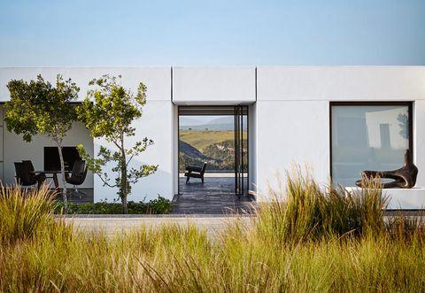 Grass family, Shade, Concrete, Prairie, Daylighting,