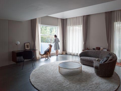 Así es el diseño de un piso para un perro discapacitado