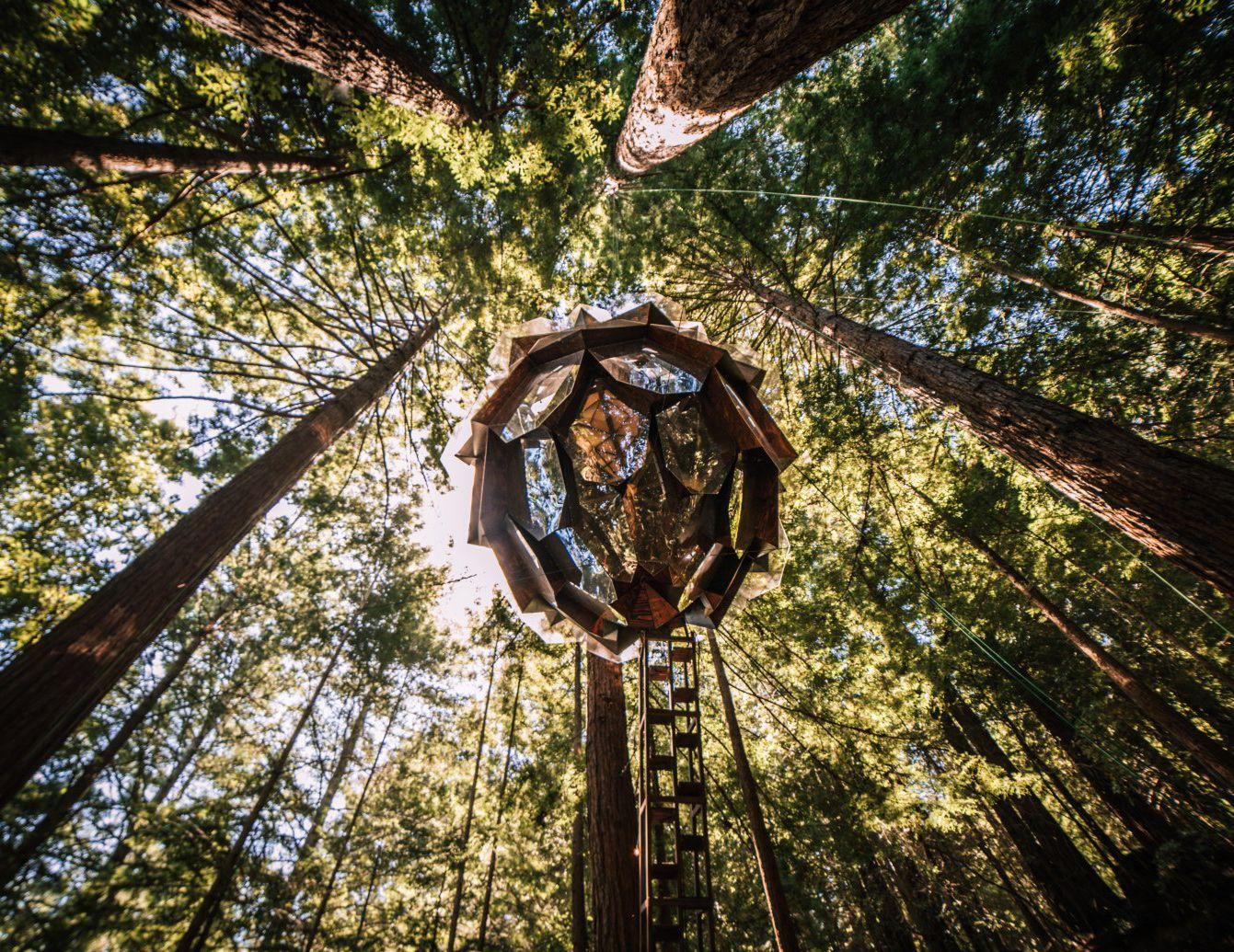 Imagini pentru cabañas en el bosque