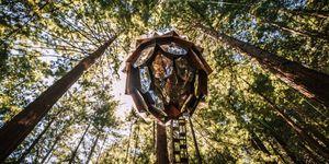 Casa piña suspendida en el aire en un bosque