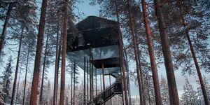 Snohetta casa sull'albero