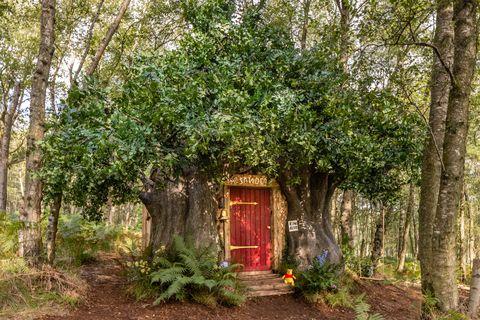 casa de winnie the pooh en airbnb