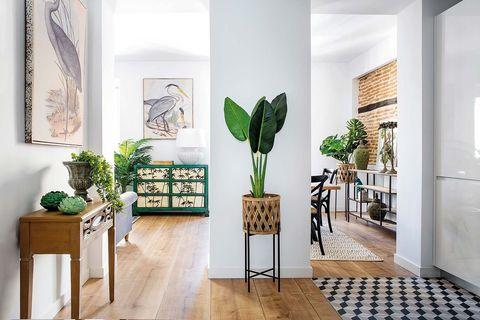White, Green, Floor, Interior design, Room, Houseplant, Property, Wall, Furniture, Leaf,