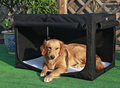 Caseta portátil para perros