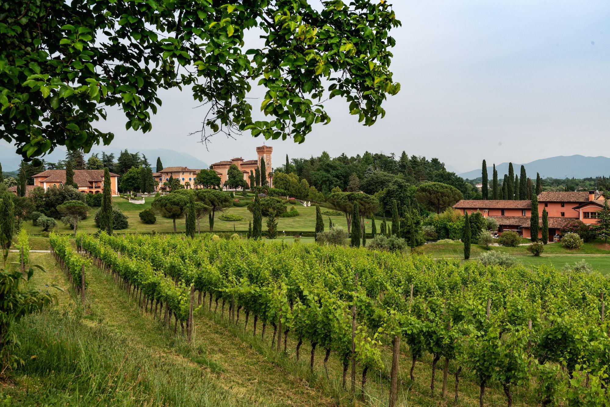 #WineResort, tappa tra i vini friulani più esclusivi