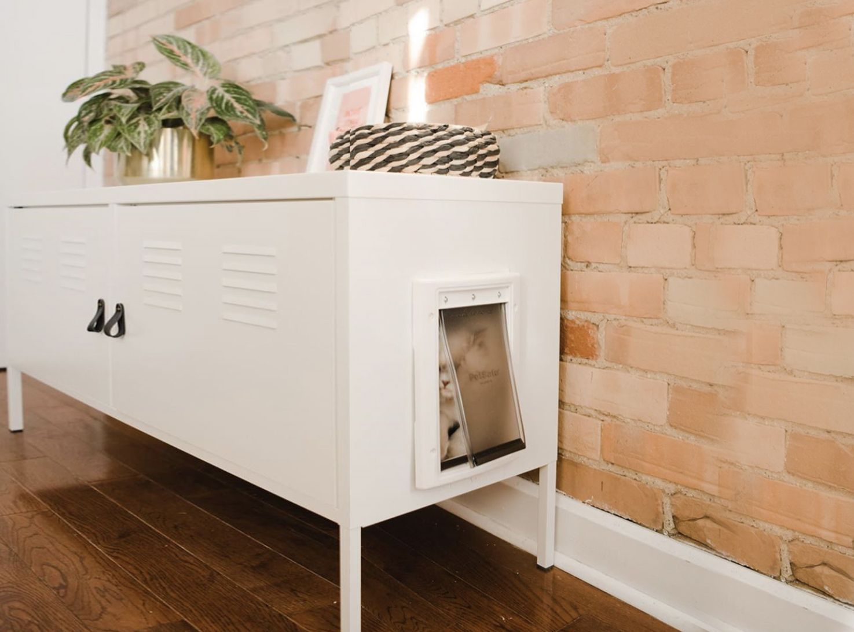 Diy Cabinet That Hides Cat Litter Box