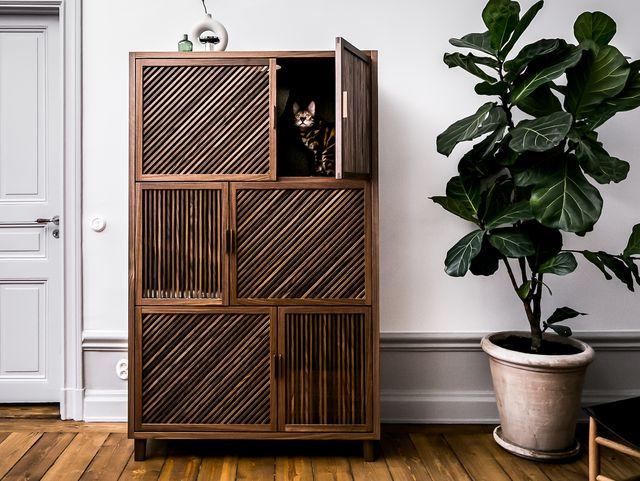 Cat Flat Cat House Hidden Inside Handcrafted Storage Cabinet
