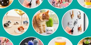 cat lover gifts best 2018
