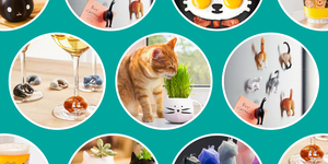 cat lover gifts best 2019