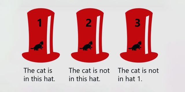 cat logic problem