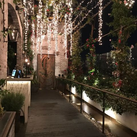 Lighting, Light, Aisle, Tree, Architecture, Building, Plant, Landscape lighting, Courtyard, House,