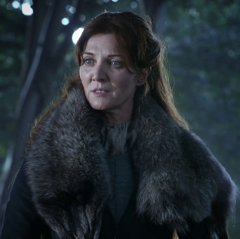 Fur, Beauty, Outerwear, Fur clothing, Screenshot, Darkness, Photography, Forest, Fictional character, Long hair,
