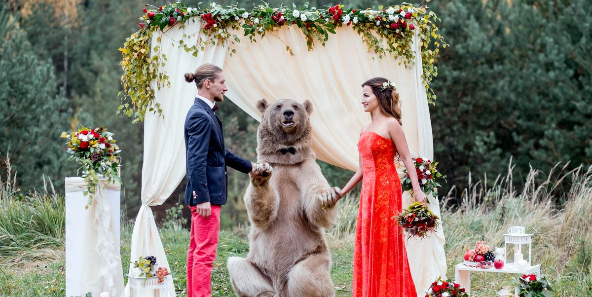 Russian Couple Gets Married by Bear - Why That's Not OK