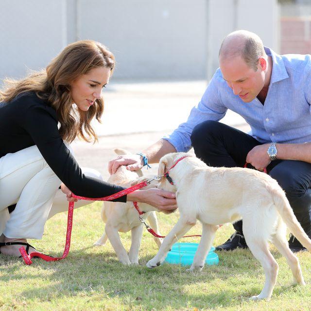 kate middleton prince william dog army training center