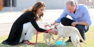 kate middleton prince william dog army training center