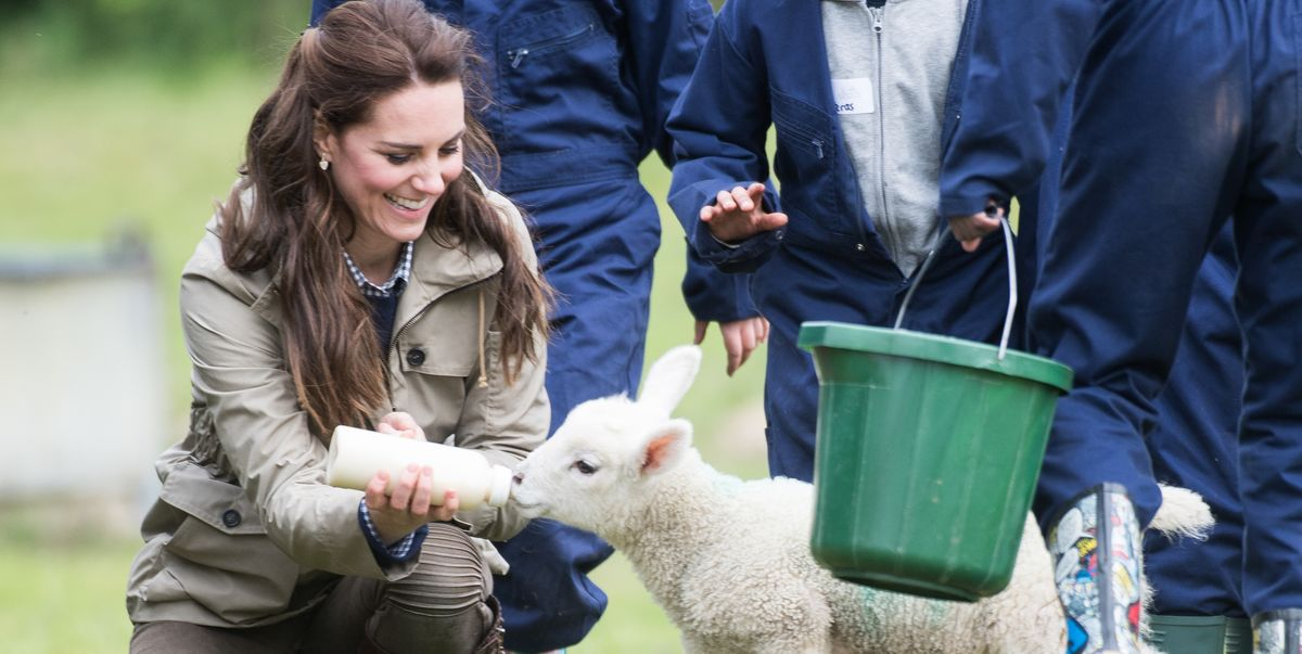 Kate Middleton and Prince William Took George, Charlotte, and Louis to See Baby Lambs This Weekend