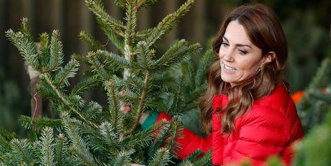 dit is wanneer je een kerstboom kan neerzetten en wanneer je het weer moet weghalen