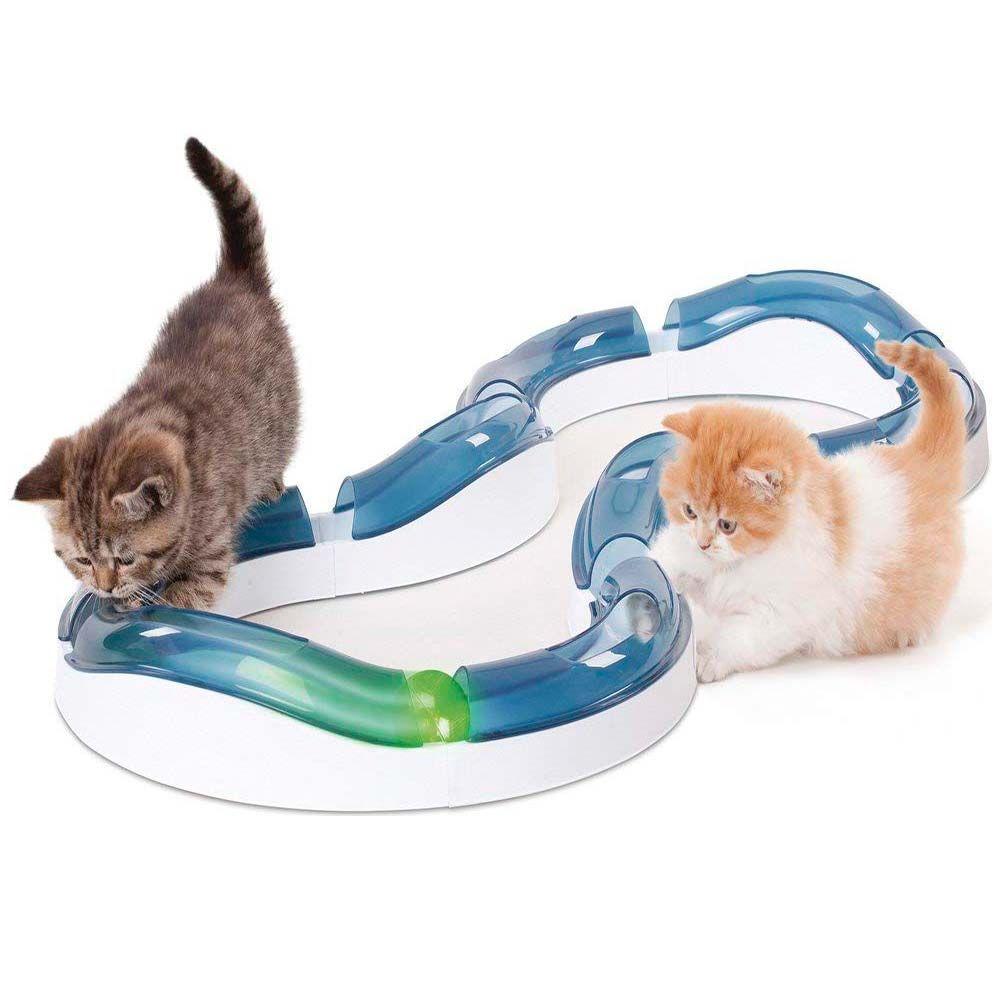 Circuito de rodillos para gatos