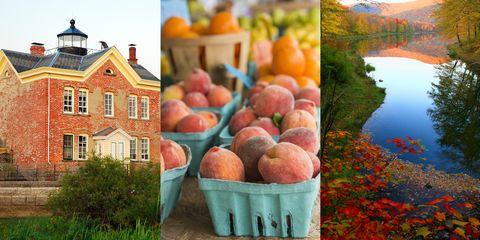 Window, Natural landscape, Fruit, Landscape, Produce, Natural foods, Local food, Peach, Tarn, Bank,