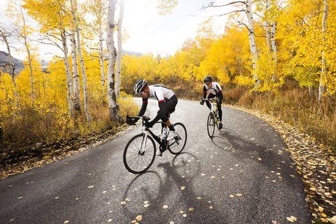 cosas, ciclista, otoño